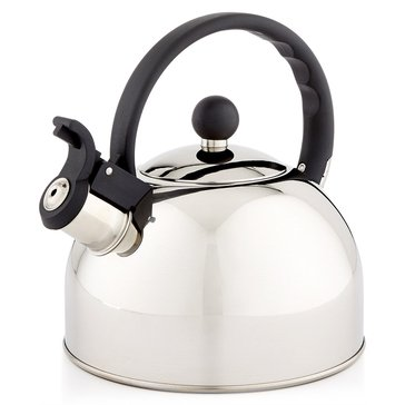 Tools of the Trade Polished Stainless Steel Tea Kettle
