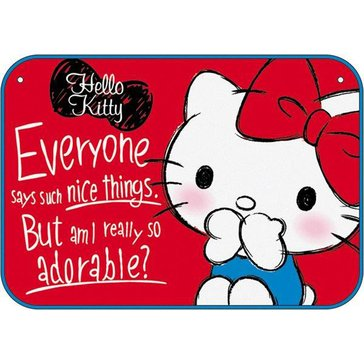 Hello Kitty Drawing Blanket